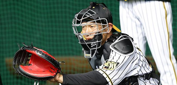 小豆畑眞也 阪神タイガース 捕手