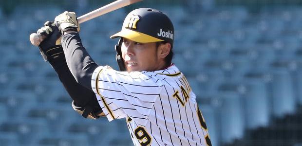 高山俊 阪神タイガース 外野手